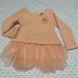 Little lass baby dress